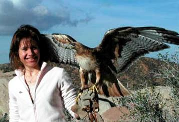 Leslie Kirchner Artist with Red-tailed Hawk