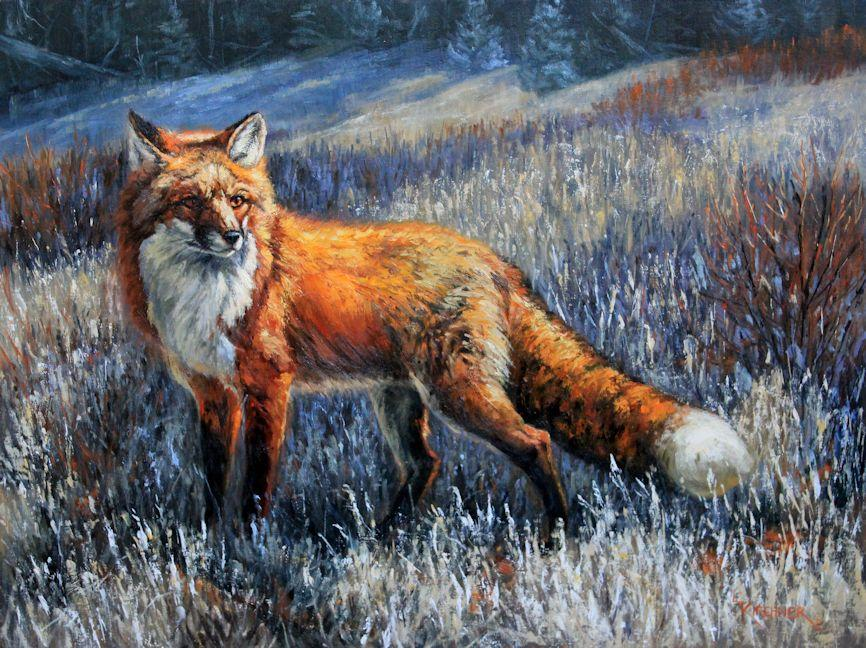 Red fox, red fox art, red fox painting, western art, red fox oil painting, leslie kirchner, leslie kirchner art, western wild life, western wildlife painting, nature art, nature artists, canid, vulpes, vulpes, vulpes vulpes