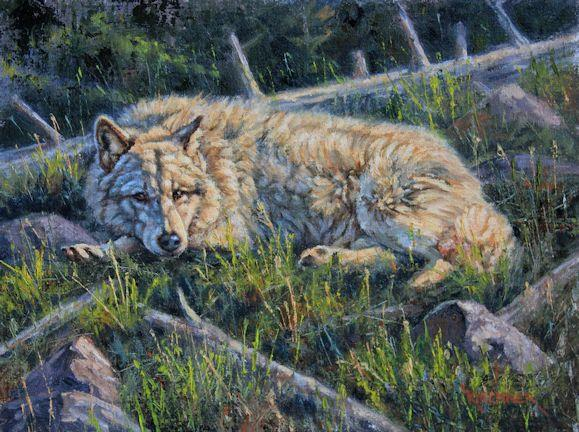 Arctic wolf, arctic wolf art, arctic wolf painting, artctic wolf laying down, arctic, nature art, nature artist, arctic wolf painting, arctic wolf art, wolf, wolves, gray wolves, timber wolves, wildlife art, wildlife painting, western art, western painting, leslie kirchner, leslie kirchner art, leslie kirchner wolf art, wildlife painting,