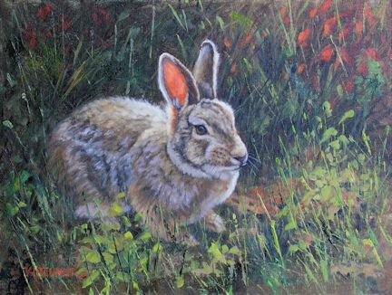 kirchner, leslie kirchner art, bunny, bunny art, rabbit painting, oil painting, wild rabbit, wildlife art, western art, nature art, nature artist, cottontail rabbit,