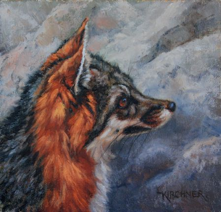 Leslie Kirchner, leslie kirchner artist, leslie kirchner wildlife artist, leslie kirchner art, nature artist, nature art, western art, western artist, wildlife artist, wildlife art, grey fox, grey fox art, gray fox, gray fox art, grey fox painting, gray fox painting, oil painting, wild canid, wild canid art