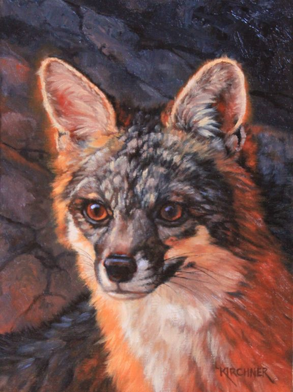 Leslie Kirchner, Leslie Kirchner Artist, wildlife artist, western artist, nature artist, nature artists, wildlife art, western art, nature art, oil painting, canid, canid art, wild canid, fox art, grey fox art, gray fox art, grey fox, gray fox, grey fox painting