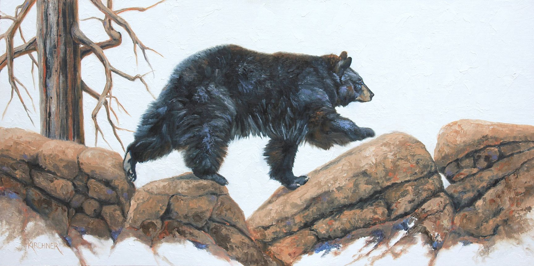 Leslie Kirchner, leslie kirchner art, lesliekirchner artist, wildlife artist, western artist, nature artist, western art, wildlife art, nature art, black bear, black bear walking, black bear art, black bear painting, black bears, ursus americanus