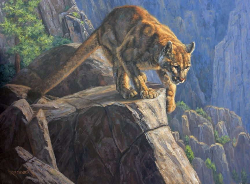 Leslie Kirchner, leslie kirchner art, nature art, nature artist,nature artists, western artist, wildlife artist, wildlife art, western art,Cougar, cougar art, cougar painting, mountain lion, mountain lion painting, mountain lion art,